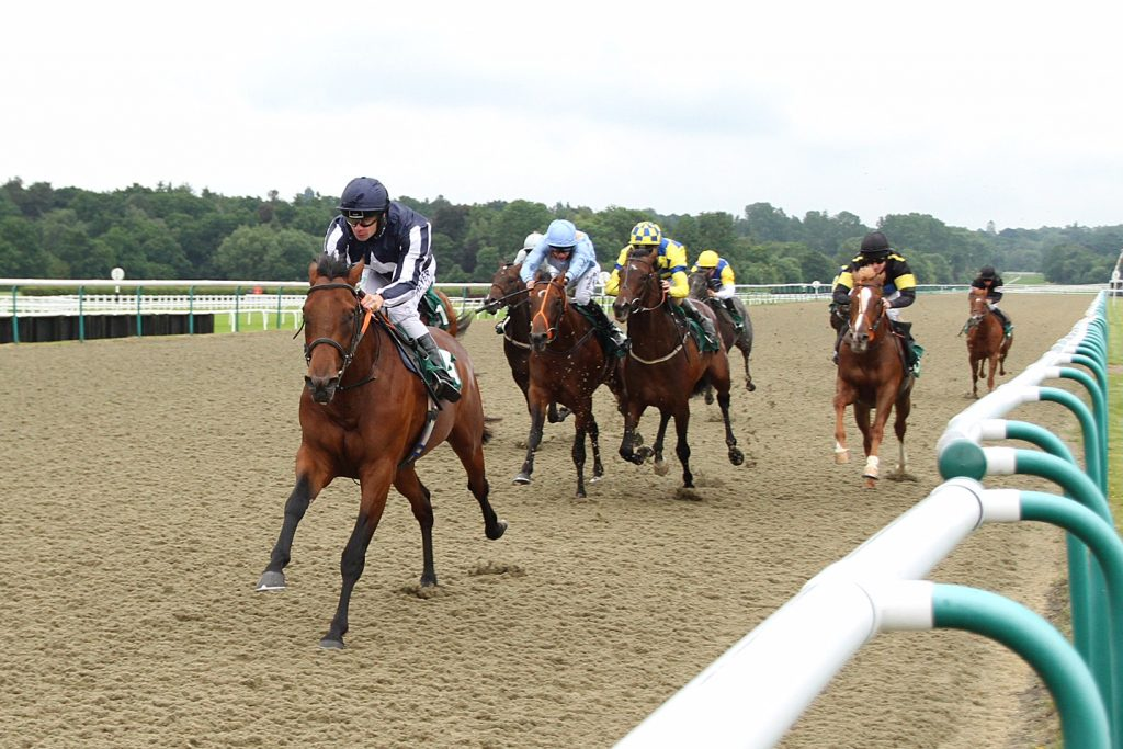 1st The Avensys Novice Stakes at Lingfield 16/6/16 O: Excel Racing T: Roger Teal J: Fergus Sweeney